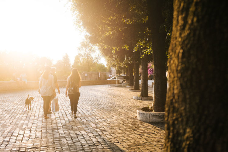 Sunshine people Casual Clothing Day Footpath Fujifilm_xseries Full Length Leisure Activity Lens Flare Lifestyles Outdoors Pathway Sun Sunbeam Sunlight Sunny The Way Forward Tree Vscofilm Walkway 43 Golden Moments