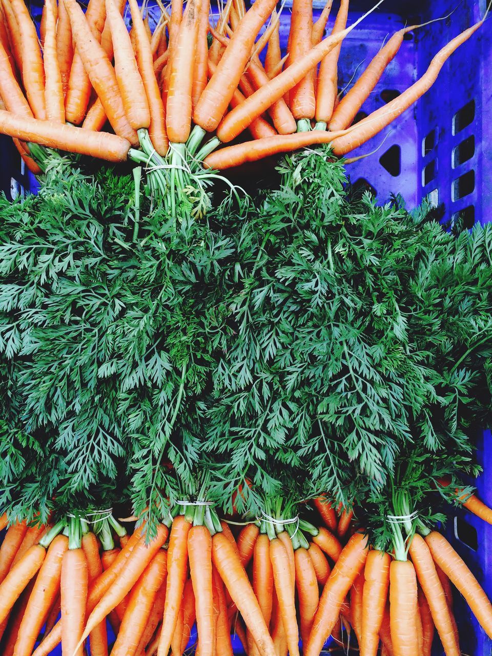 Close-Up View Of Fresh Carrots