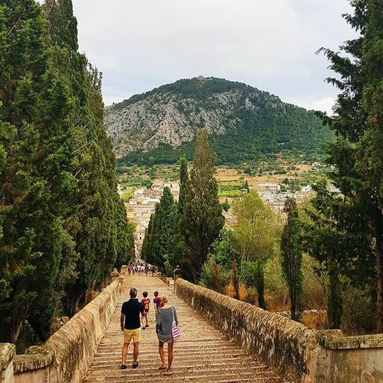 Looking back from the top of the Calvario steps, Pollenca oldtown - Pollença Heritage Town Mountainbiking Mallorca Steps Forest Mountains Rustic Rural SPAIN Island Travelling Family