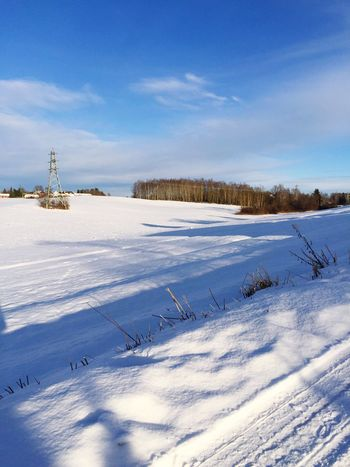 Winter Landscape Winter Wonderland