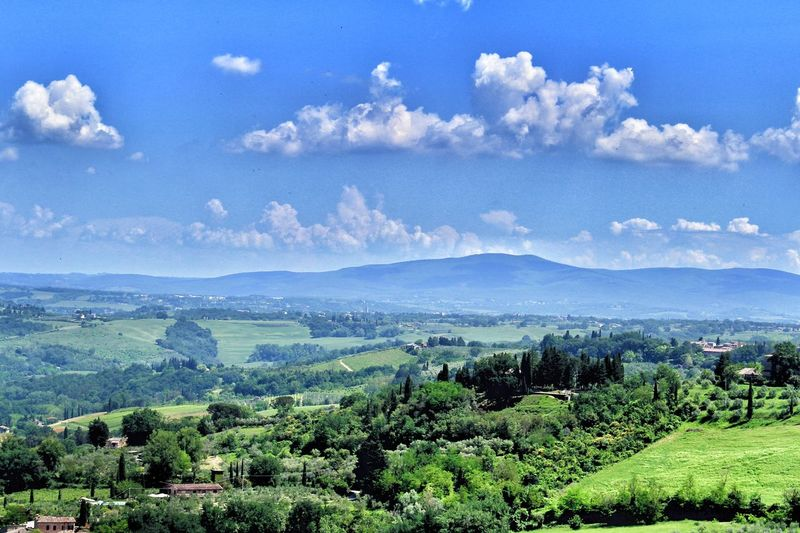 A landscape view of the Tuscany beautiful nature from San Gimignano, Italy Tree Flower Rural Scene Mountain Agriculture Blue Sky Landscape Cloud - Sky Plant Growing Tranquil Scene Countryside Idyllic Tranquility Non-urban Scene Scenics Calm Plant Life Cultivated Land