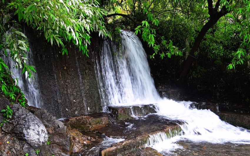 Tree Waterfall Water Nature No People Outdoors Beauty In Nature Motion Day Scenics Freshness Been There. EyeEmNewHere The Week On EyeEm Nature Beauty In Nature Landscape Travel Destinations Done That.