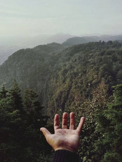 Close-up of hand against green mountain during foggy weather