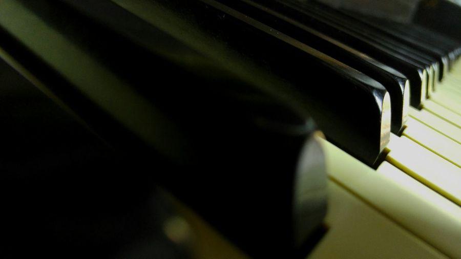 Macro Beauty Macro Photography Macro Pianoforte Pianomacro