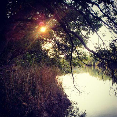 The sun :)