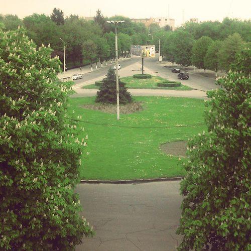 University Lutsk View from the window