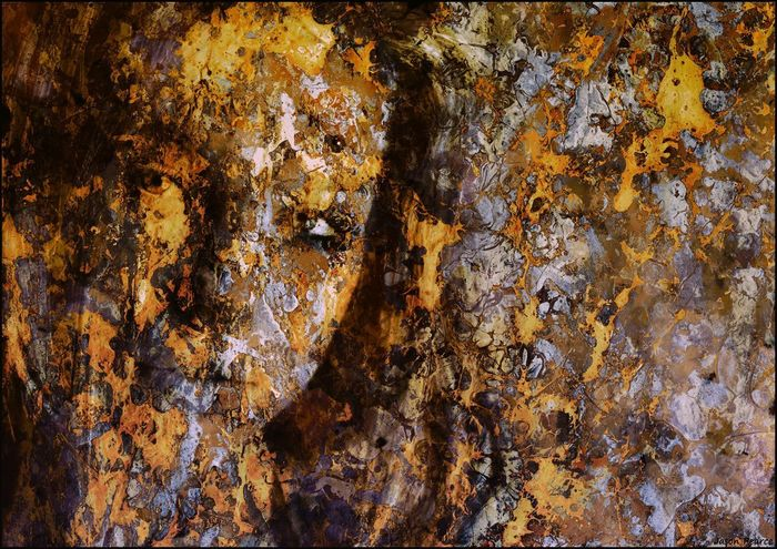 Backgrounds Bark Brown Close-up Day Detail Face Full Frame Invertebrate Jacksonpollock Jasonpearce Lichen Metal Nature Pattern Plant Plant Bark Rough Textured  Textured Effect Tree Tree Trunk Trunk Weathered