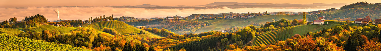 Winery in south styri, austria. panoramic view at hills of wine road. famous tuscany