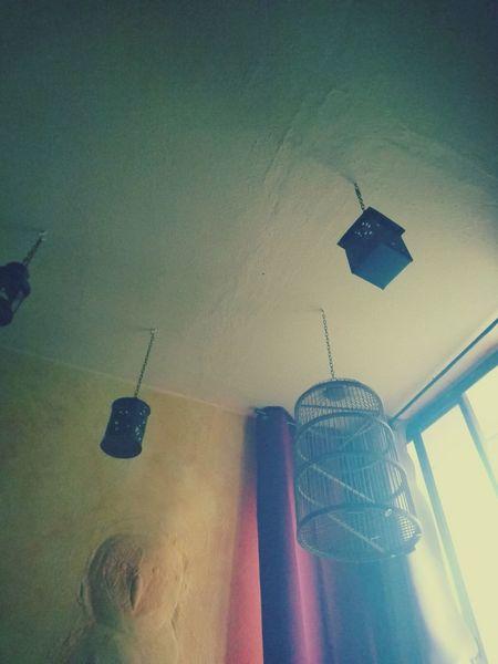 Hanging Indoors  Sony Xperia Xz This Week On Eyeem Cascais 365days365photos Empty Cage Lanterns Owl Art