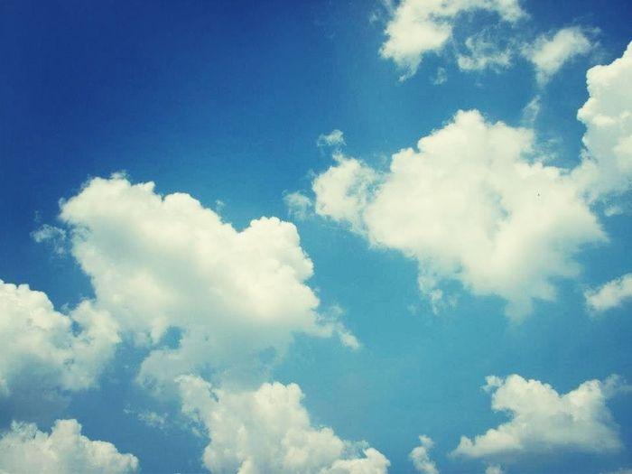เธอเห็นท้องฟ้านั้นไหม .