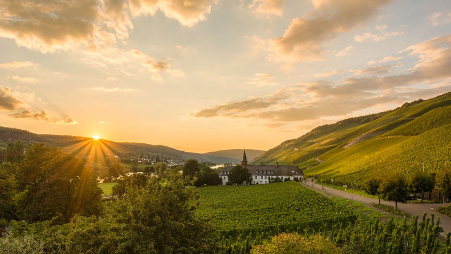 Clouds Germany Green HDR HDR Collection Hdr Edit Hdr_Collection Landscape Landscapes With WhiteWall Mosel Orange Sky Sunset Sunset_collection Village Vineyard Vineyards  Wine