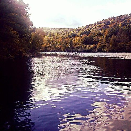 Thatnewhampshirevibe Newhampsire NH Riverbound gorgeous foliage had a gorgeous day on the Connecticut river fishing with dad!! ???