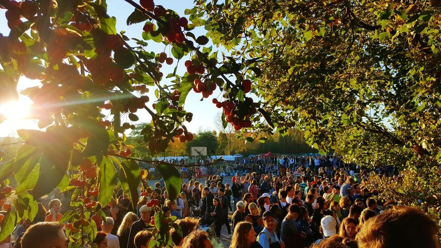 Large Group Of People Tree Sunlight Outdoors Adults Only Day Adult People Real People Crowd Men Women Nature Sky Popular Music Concert Berlin Life First Eyem Photo Travel Photography EyeEm Best Shots Eye4photography  FirstEyeEmPic Ig_worldclub Eyeemphotography StreetphotographyOnly Men