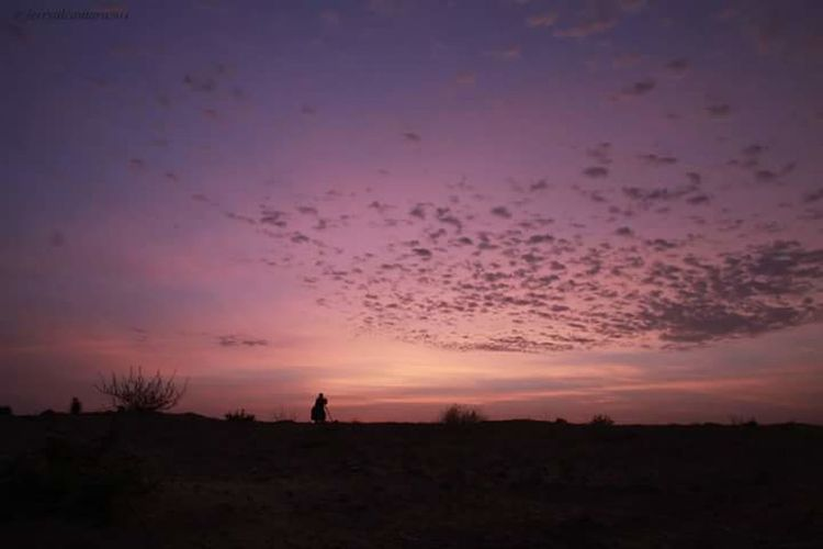 Feel The Journey Feelthejourney Saudi Arabia ALAhsa Journey sunrise Silhouette