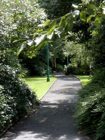 EyeEm Dublin Dublin, Ireland Depth EyeEm Nature Lover Nature St. Stephens Green At The Park Parks Travel Cgk Photography