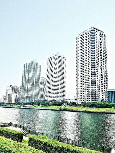 Water front of Tonyo .. It's hot and humid (^^;; 佃島リバーシティは涼しげですが、湿度はさらに高いのよ…。 Buildings 佃島 隅田川 東京