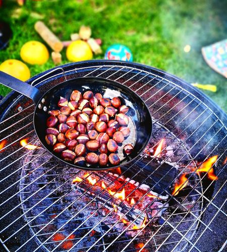 Joy. 🌰 Chessnut Afternoon Relax Fire Barbecue Colour Life Photography Joy