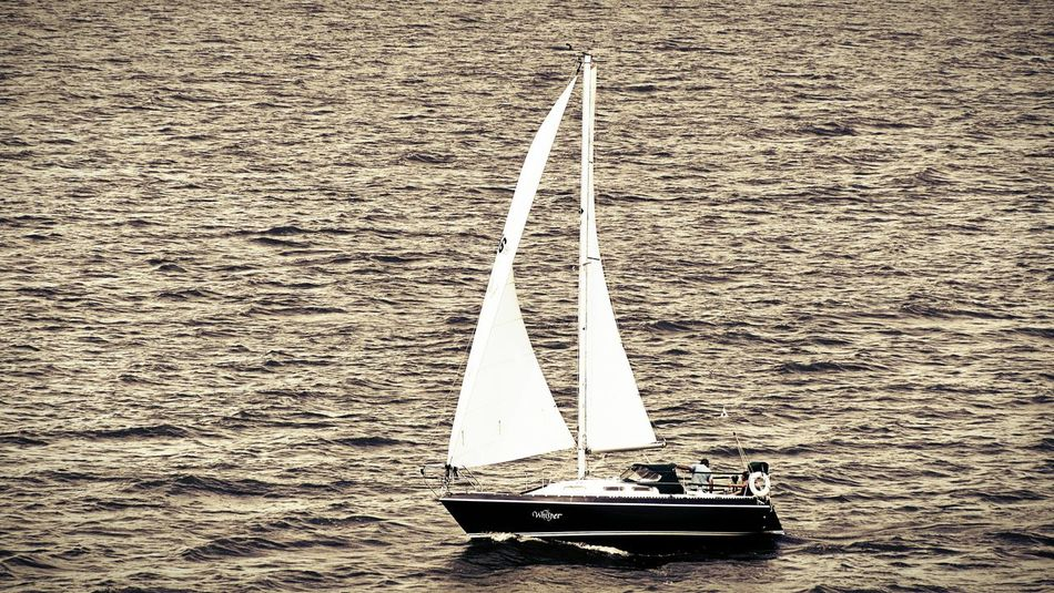 Outdoors Day Sea Scenics Mode Of Transport Ship Harbor Nautical Vessel Travel Tourism Sail Away Sailingship Sailing Club Sailing Away Sailing Boats Sail Away, Sail Away Sailors Sailing Vessel Sailing Vessels And Sailors Sailing Family Sailing Yacht Yatch Sailing Yatch Marine Yacht Yacht⚓️
