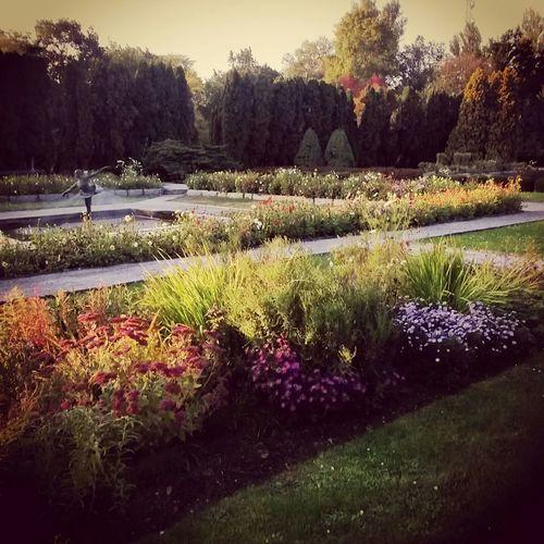 Posen Poznań Poland Mytown Botanik Ogrod Garden Autumn Autumn Colors Cold And Sunny
