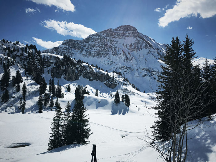 Beauty In Nature Landscape Mountain No People Outdoors Ski Snow Tree Warth Winter