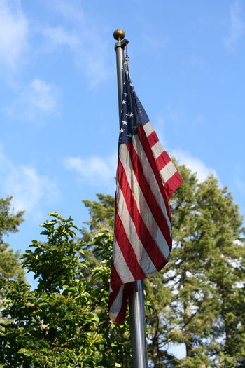 Blue Close-up Cloud Cloud - Sky Culture Day Flag Growth Low Angle View Memorial Day Weekend 2016 National Flag Nature No People Outdoors Patriotism Pole Pride Red Sky USA FLAG Striped Tree Wind The Great Outdoors - 2016 EyeEm Awards