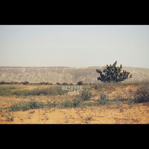 روضة_الخفس HDR Nature Photography تصويري nature صباح_الخير صورة photo Goodevening Good_evening مساء_الخير مسهم_بالخير طبيعه لاندسكيب landscape panorama صور photos PicsArt السعودية Saudi_Arabia SaudiArabia ksa instashot nocrop