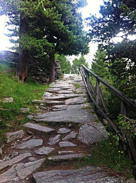 Hiking Nature Stones On My Way