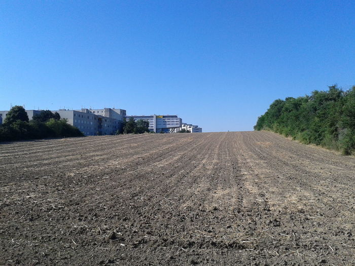 Buildings By Field Against Clear Blue Sky