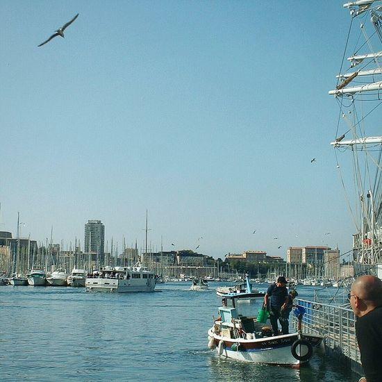 """Vieux Port"". Boats Fishermen Boat Fishermen Harbour Vieux Port Port / Porto Vecchio di Marsiglia Marseille France Sunny Winter Day"