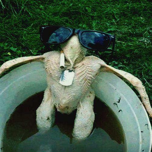 Alors poulette, tu te fais dorer la pilule?:-) Fun