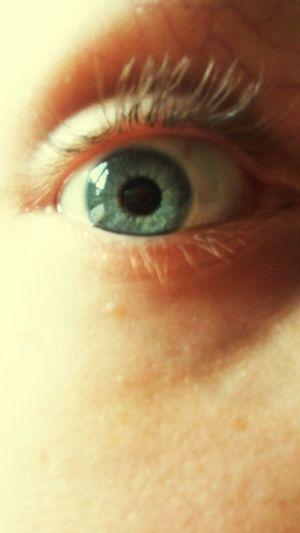 Human Eye Human Body Part One Person Eyelash Eyesight Looking At Camera Iris - Eye Eyeball Eyelid Sensory Perception Eyebrow Illuminated Yellow Arts Culture And Entertainment The City Light Brown Religion Spirituality Textured  Day Red Textured  Full Frame Water Fragility