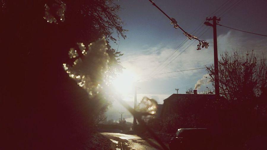 Relaxing Sunset Wintertime