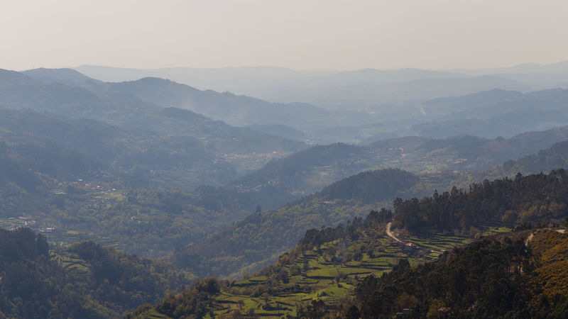 Landscape at Montalegre Region, Portugal Agricultural Land Agriculture Fog Hazy  Holiday Landscape Montalegre Mountain Mountain Range Nature No People North Outdoors Panorma Portugal Portuguse Sky Terrace Terraced Field Tranquility Travel Destinations Vacation Vacations