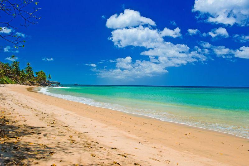 Black Rock Beach, Tobago Beachphotography Caribbean Trinidad And Tobago EyeEm Gallery EyeEm Nature Lover EyeEmNewHere EyeEm Best Shots Sky Beach Land Sea Cloud - Sky Water Beauty In Nature Scenics - Nature Tranquil Scene Tranquility Blue Sand Nature Idyllic Horizon Over Water Horizon Tree No People Outdoors Day