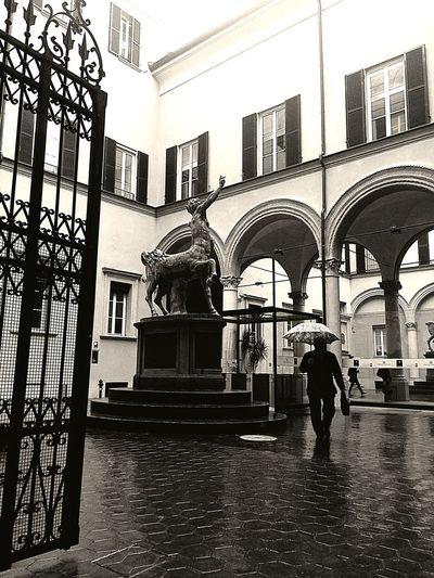 Bologna, Italy I Love My City City Life