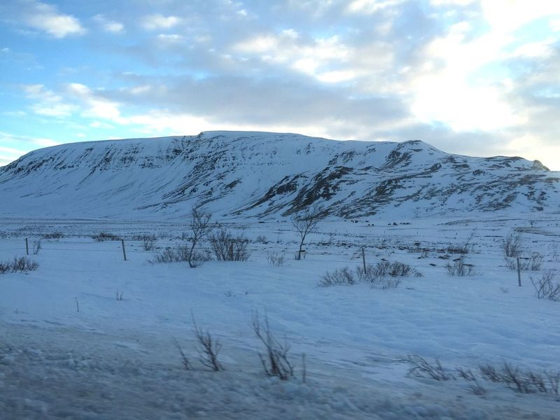 Iceland Mountain Snow Landscape Snow Covered Snowy Winter Scenery Cold Ice Wind Grass Blowing In Wind Movement