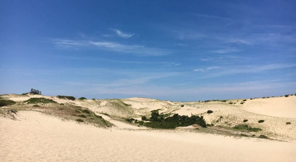 Ptown Sand Dunes Travel Travel Destinations View Views EyeEmNewHere Dunes Provincetown  Capecod Massachussets Hiking Trail Hiking Hikingadventures PTown Sky Land Scenics - Nature Sand Tranquil Scene Tranquility Landscape Beauty In Nature Environment Nature Non-urban Scene Sand Dune Cloud - Sky