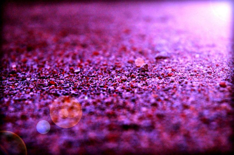 nikon d50 Autofocus Red Sand Reflected Glory Selective Focus Soft Showdow EyeEm Landscape Selectivefocus