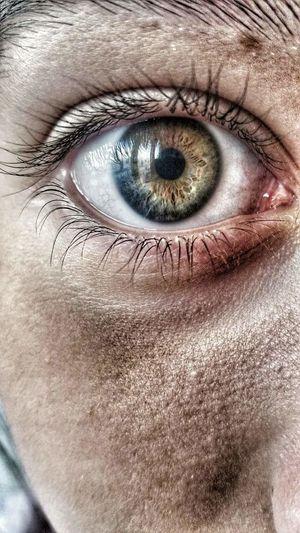 Eye Looking At Camera Human Skin Iris - Eye Eyeball Looking Vision Person Human Eye Colors Beautiful Green Brown