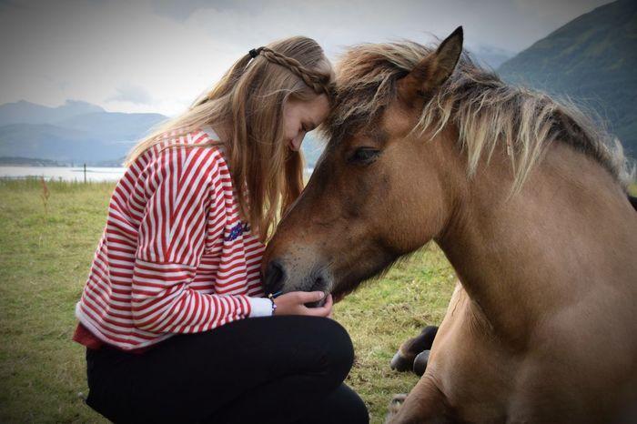 Pure love Horsegirl Mammal Animal Domestic Animals Animal Themes Pets Domestic Vertebrate Horse Nature