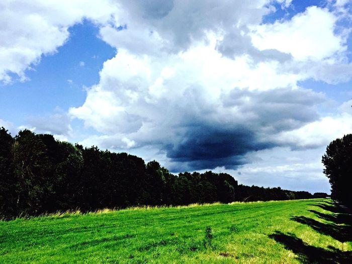 Taking Photos Nature EyeEm Nature Lover Summer ☀ WeatherPro: Your Perfect Weather Shot EyeEm Best Shots Weather Sky Nature Photography EyeEm