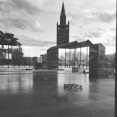 Berlin Berliner Ansichten Neuenationalgalerie Construction Work Reflections Blackandwhite Sancho