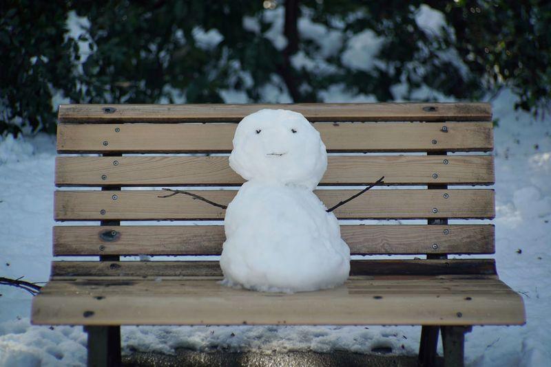 雪だるま ベンチ Cute Snowman Bench After Snowing Day Hello World Enjoying Life Taking Photos Park Tokyo,Japan January 2018 Winter Cold Temperature Day Anthropomorphic Face Outdoors