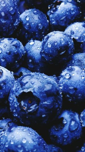 Backgrounds Full Frame Freshness Textured  Large Group Of Objects Close-up Abundance Blueberry Fruit Food And Drink Selective Focus Purple Day Nature Vibrant Color Heap Studio Shot No People First Eyeem Photo