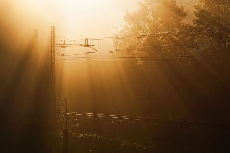 Sunset Fog Outdoors View Out Of The Window View From The Balcony Traintracks Trains Eyeemphotography EyeEmBestPics EyeEm Nature Lover EyeEm Gallery EyeEm Best Shots - Nature EyeEm Best Shots EyeEm Beauty In Nature Illuminated
