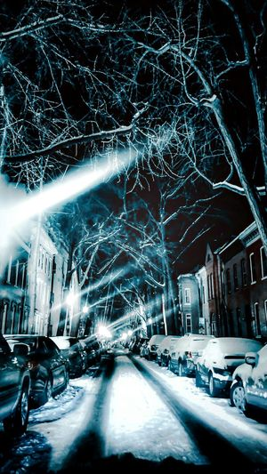 And the snow haunted . . . Snow Night Photography Street Photography Urban Landscape Tree_collection  Cityscape Streetphotography Tadaa Community Look Closer Streamzoofamily