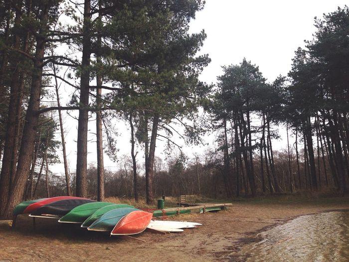 Canoe Lake Canoe Canoe Paddling Island Lake