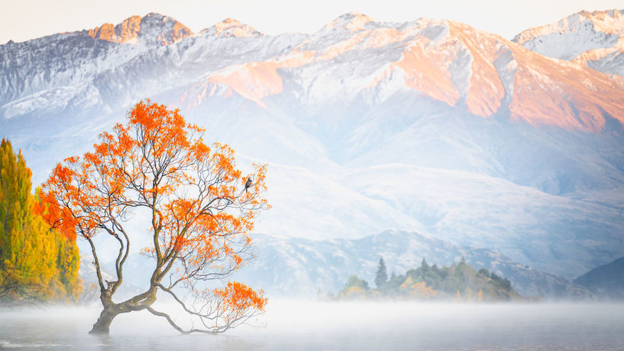 Scenic view of snowcapped mountains and lake wanaka during winter