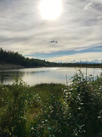 EyeEmNewHere Alaska Water Nature Lake Sky Plant Growth Beauty In Nature Tranquility Tranquil Scene Scenics No People Outdoors Day Tree Grass Mountain Lost In The Landscape