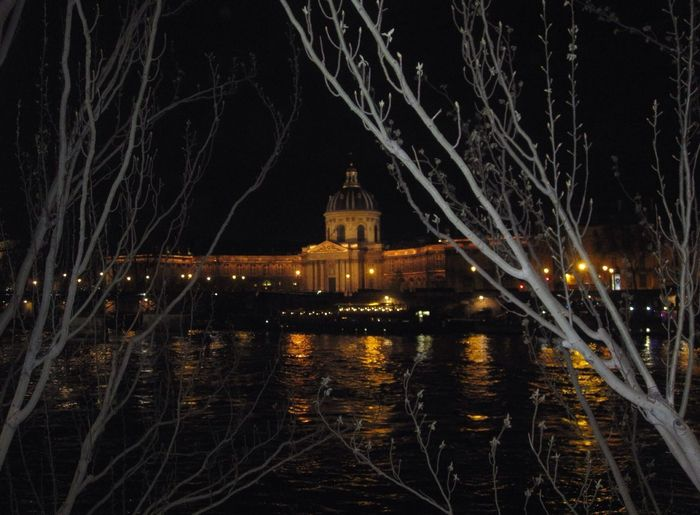 Institut De France Paris Paris By Night Lights Magical Trees Tadaa Community Hanging Out